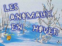 diaporama pps Animaux en hiver
