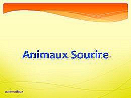 diaporama pps Animaux – Sourire