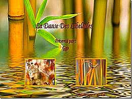 diaporama pps La danse des libellules