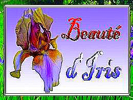diaporama pps Beautés d'iris