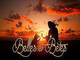 diaporama pps Belles et Bêtes