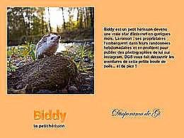 diaporama pps Biddy le petit hérisson
