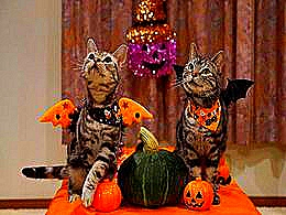 diaporama pps Bienvenue à Halloween