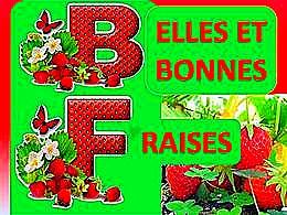 diaporama pps Bonnes et belles fraises