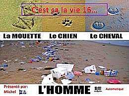 diaporama pps C'est ça la vie 16