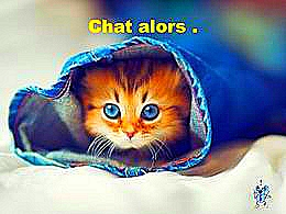 diaporama pps Chat alors