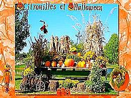 diaporama pps Citrouilles et Halloween