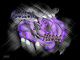 diaporama pps Couleur des fleurs