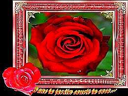 diaporama pps Dans le jardin sourit la rose