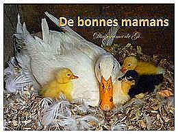 diaporama pps De bonnes mamans