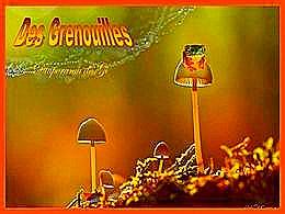 diaporama pps Des grenouilles