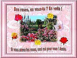 diaporama pps Des roses en veux-tu en voilà