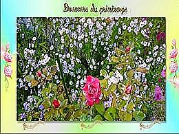 diaporama pps Douceurs du printemps