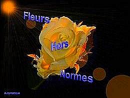 diaporama pps Fleurs hors normes