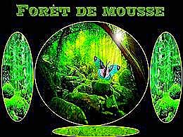 diaporama pps Forêt de mousse