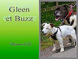 diaporama pps Gleen et Buzz