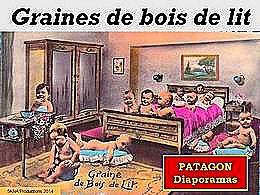 diaporama pps Graines de bois de lit