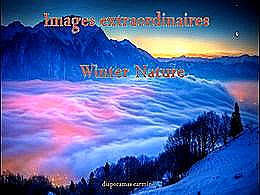 diaporama pps Images extraordinaires – Winter nature