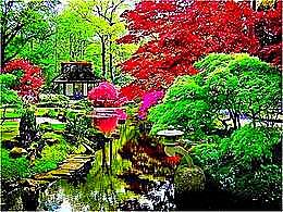 diaporama pps Jardin japonais
