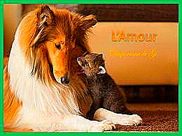diaporama pps L'amour