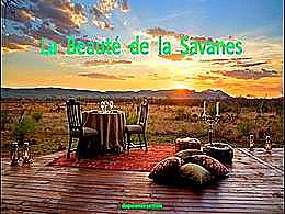 diaporama pps La beauté de la savanes
