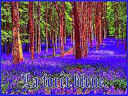 diaporama pps La forêt bleue