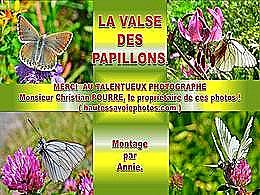 diaporama pps La valse des papillons