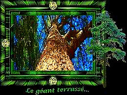 diaporama pps Le géant terrassé