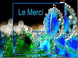 diaporama pps Le merci