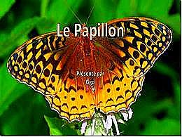 diaporama pps Le papillon