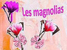 diaporama pps Les magnolias