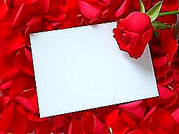 diaporama pps Les roses de Saadi