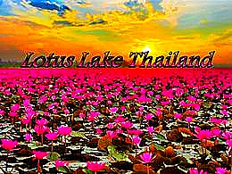 diaporama pps Lotus lake Thailand