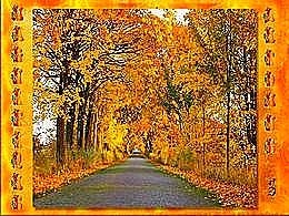 diaporama pps Magnifique automne 5