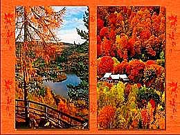 diaporama pps Magnifique automne 6