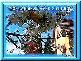 diaporama pps Mon jardin en avril 2016 bis