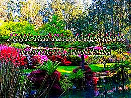 diaporama pps National rhododendron gardens australia