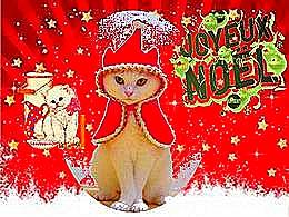 diaporama pps Noël pour chat
