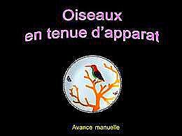 diaporama pps Oiseaux en tenue d'apparat