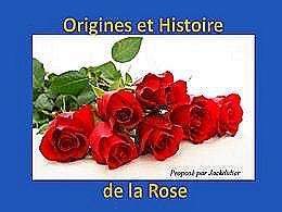 diaporama pps Origines et histoire de la rose