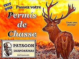 diaporama pps Quiz permis de chasse