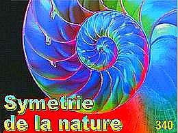 diaporama pps Symétrie de la nature