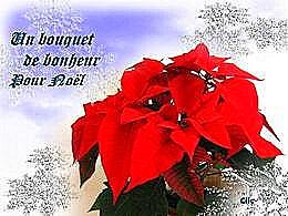 diaporama pps Un bouquet de bonheur pour Noël