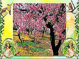diaporama pps Un printemps tout neuf 2