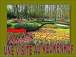 diaporama pps Une visite au Keukenhof