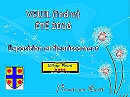 diaporama pps Veuil – Indre été 2016