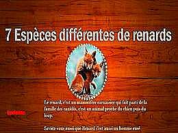 diaporama pps 7 différentes espèces de renards