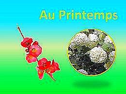 diaporama pps Au printemps