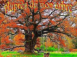 diaporama pps Auprès de mon arbre