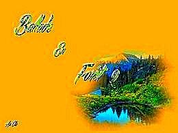 diaporama pps Ballade en forêt II